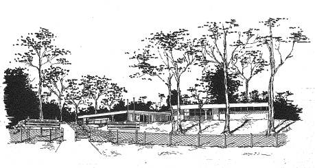 A drawing of school